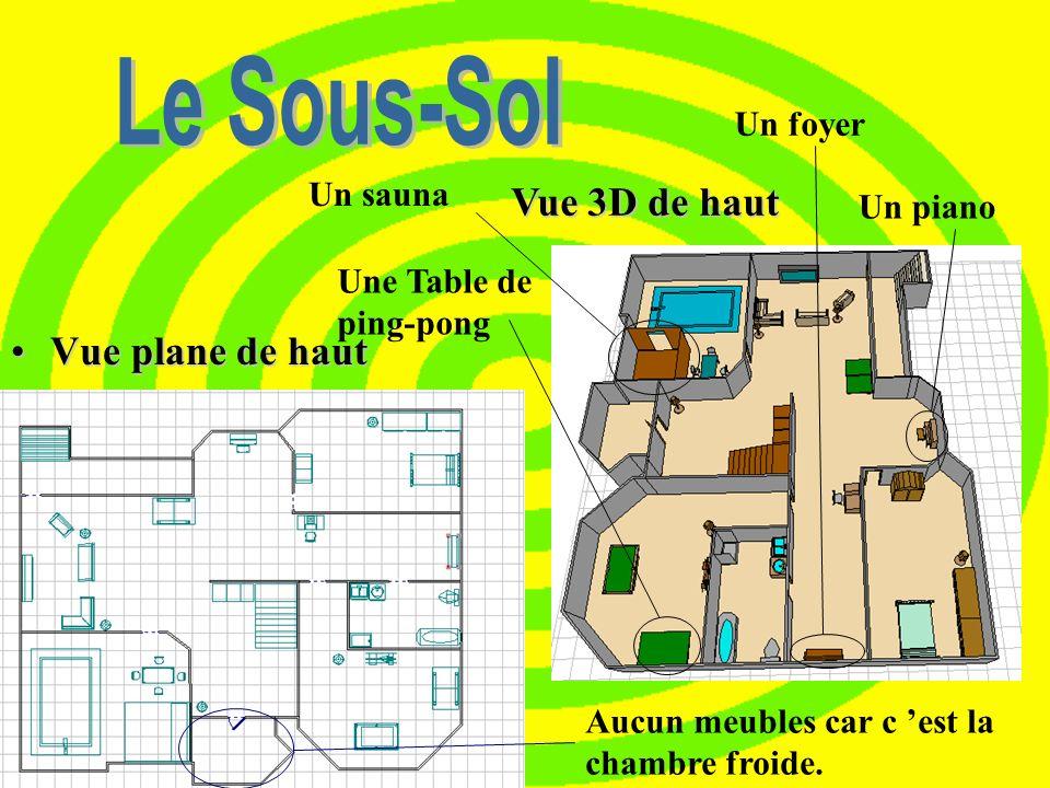 Le Sous-Sol Vue 3D de haut Vue plane de haut Un foyer Un sauna