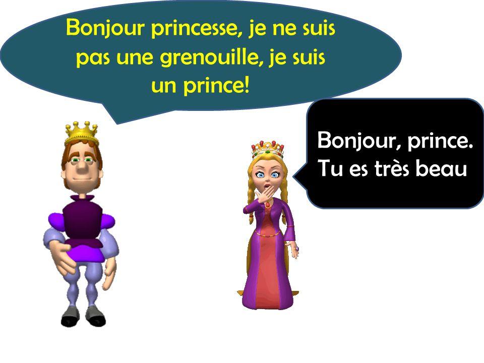 Bonjour princesse, je ne suis pas une grenouille, je suis un prince!