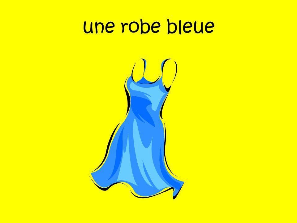 une robe bleue