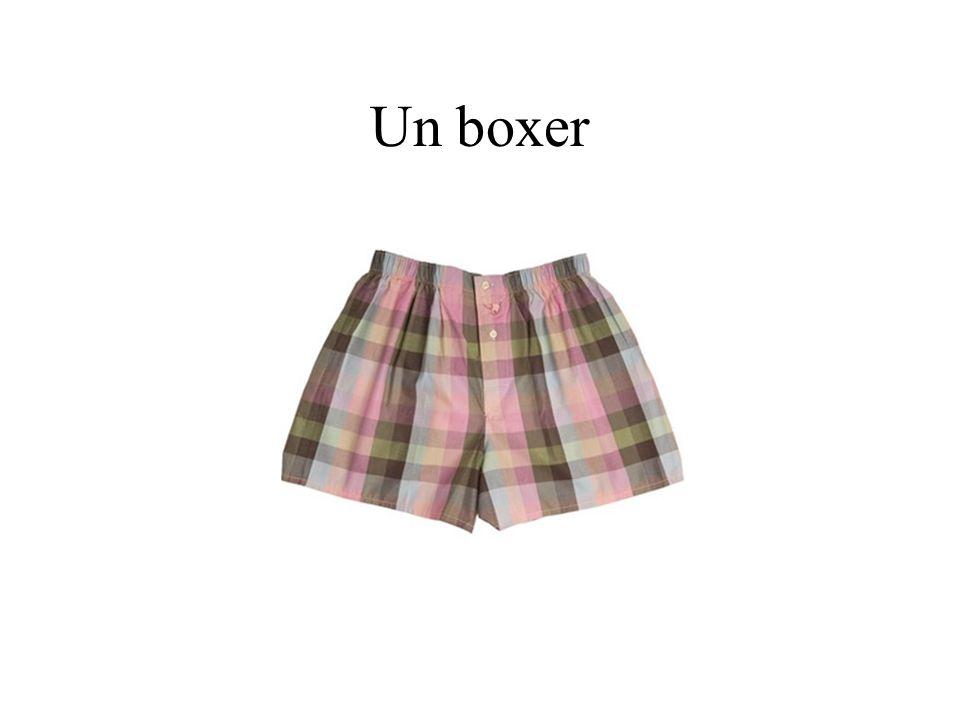 Un boxer