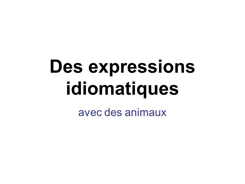 Des expressions idiomatiques