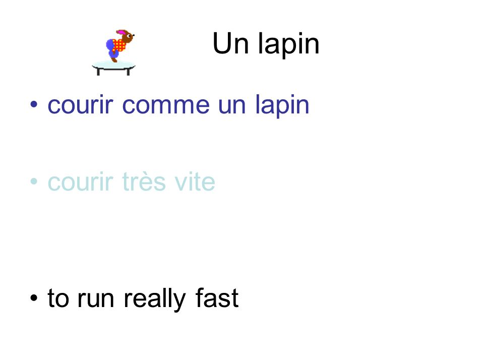 Un lapin courir comme un lapin courir très vite to run really fast