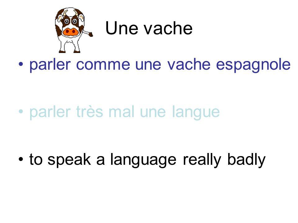 Une vache parler comme une vache espagnole parler très mal une langue
