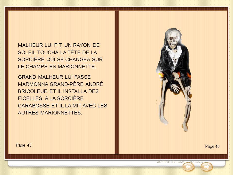 La sorcière Carabosse MALHEUR LUI FIT, UN RAYON DE SOLEIL TOUCHA LA TÊTE DE LA SORCIÈRE QUI SE CHANGEA SUR LE CHAMPS EN MARIONNETTE.
