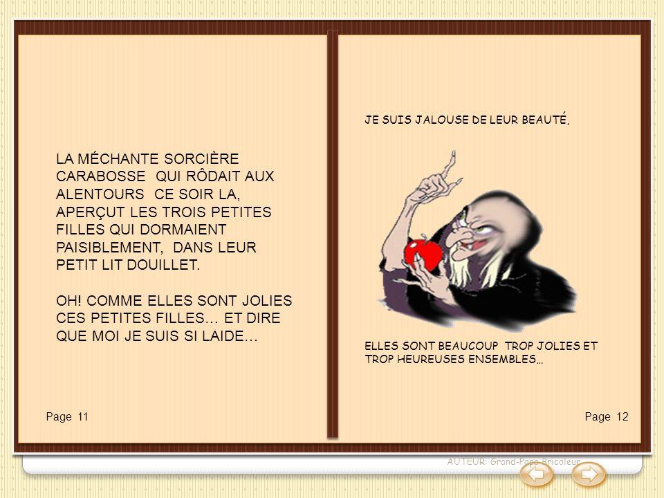 La sorcière Carabosse JE SUIS JALOUSE DE LEUR BEAUTÉ, ELLES SONT BEAUCOUP TROP JOLIES ET TROP HEUREUSES ENSEMBLES…