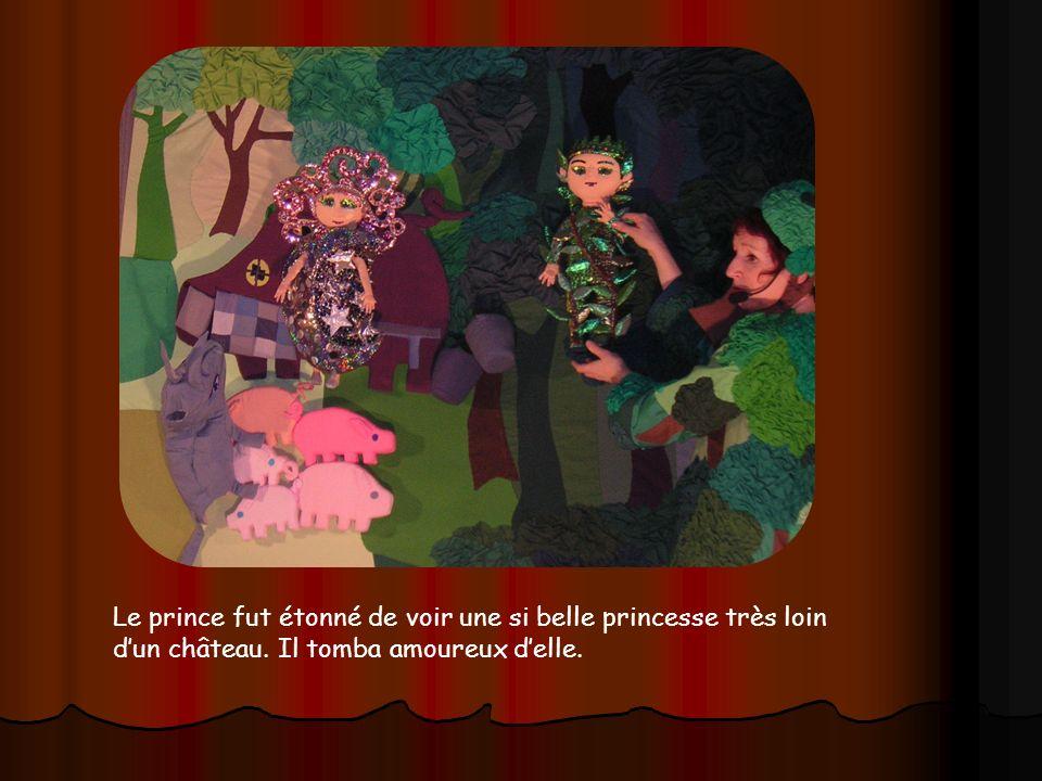 Le prince fut étonné de voir une si belle princesse très loin d'un château.