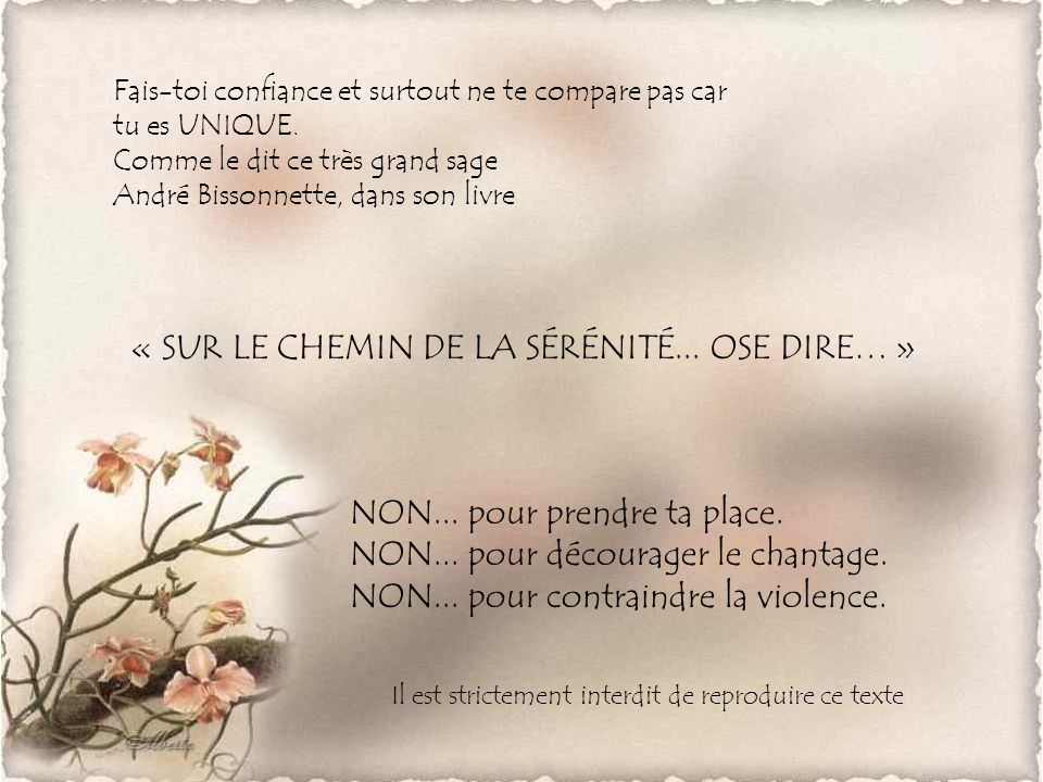 « SUR LE CHEMIN DE LA SÉRÉNITÉ... OSE DIRE… »