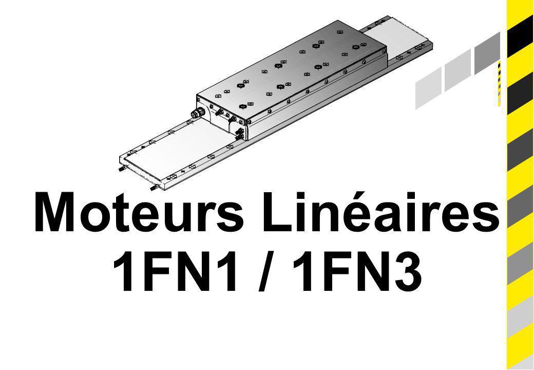 Moteurs Linéaires 1FN1 / 1FN3