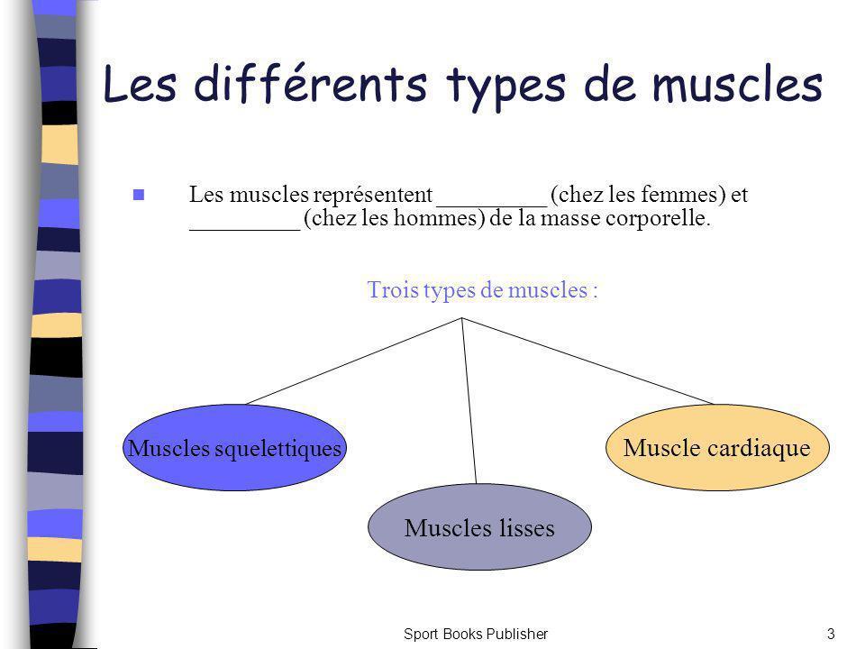 Les différents types de muscles
