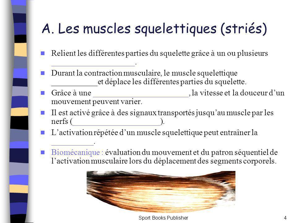 A. Les muscles squelettiques (striés)
