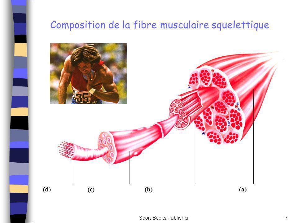 Composition de la fibre musculaire squelettique