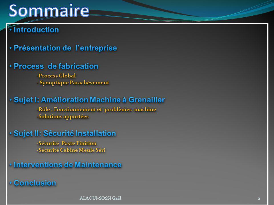 Sommaire Introduction Présentation de l'entreprise