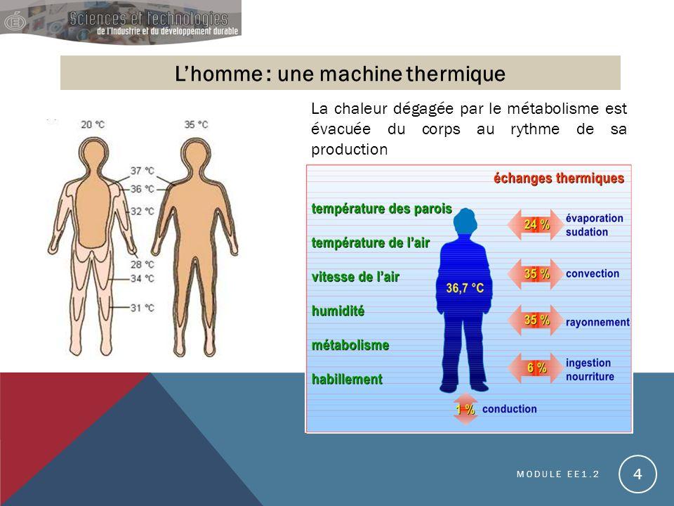 L'homme : une machine thermique