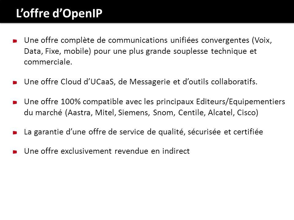 L'offre d'OpenIP
