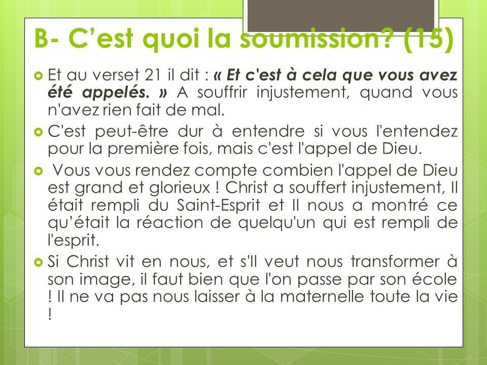 B- C'est quoi la soumission (15)