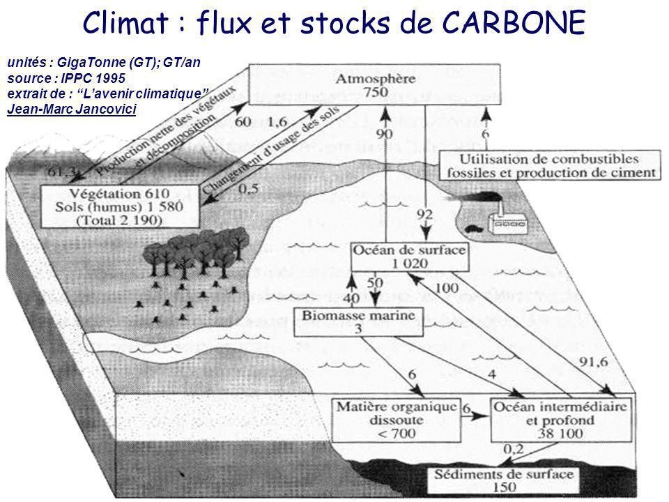 Climat : flux et stocks de CARBONE