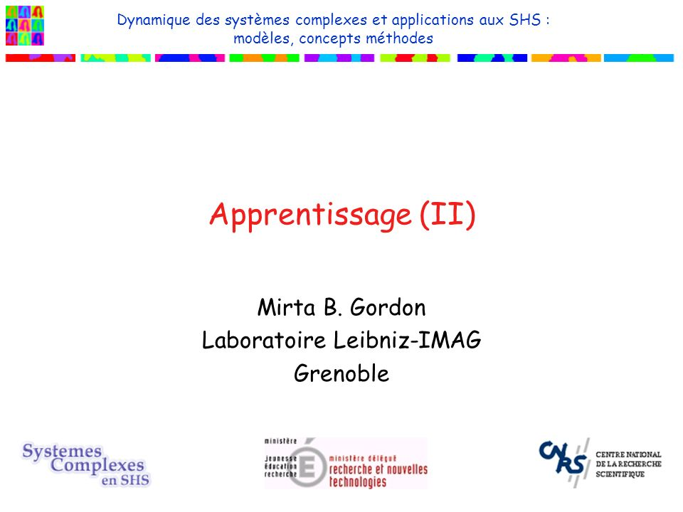 Mirta B. Gordon Laboratoire Leibniz-IMAG Grenoble