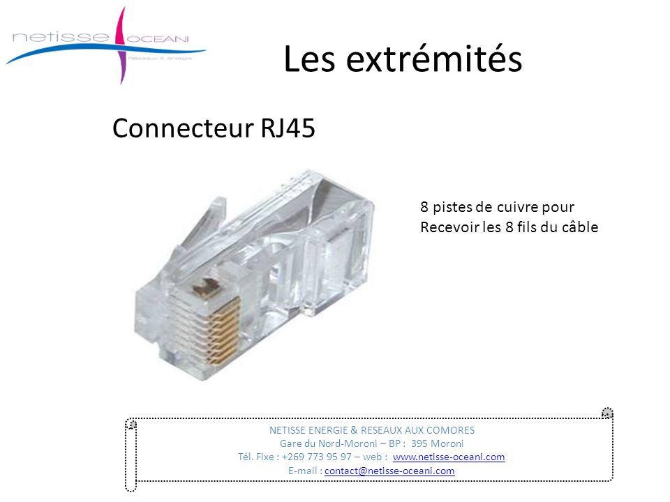Les extrémités Connecteur RJ45 8 pistes de cuivre pour