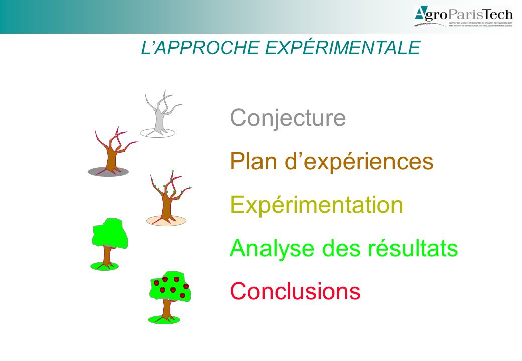 Conjecture Plan d'expériences Expérimentation Analyse des résultats