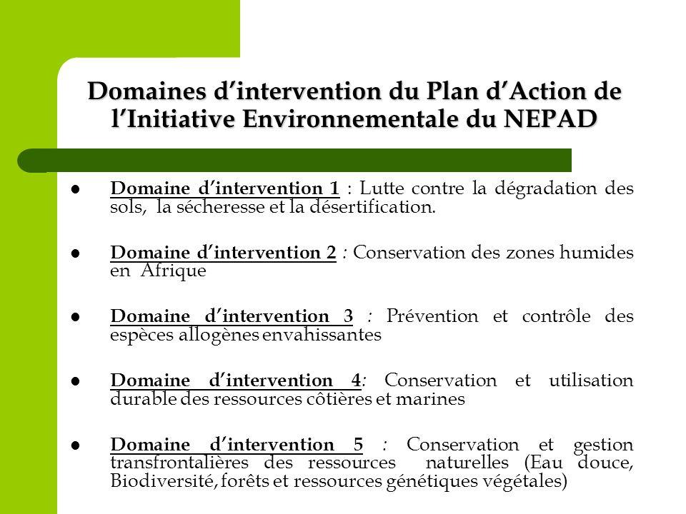 Domaines d'intervention du Plan d'Action de l'Initiative Environnementale du NEPAD