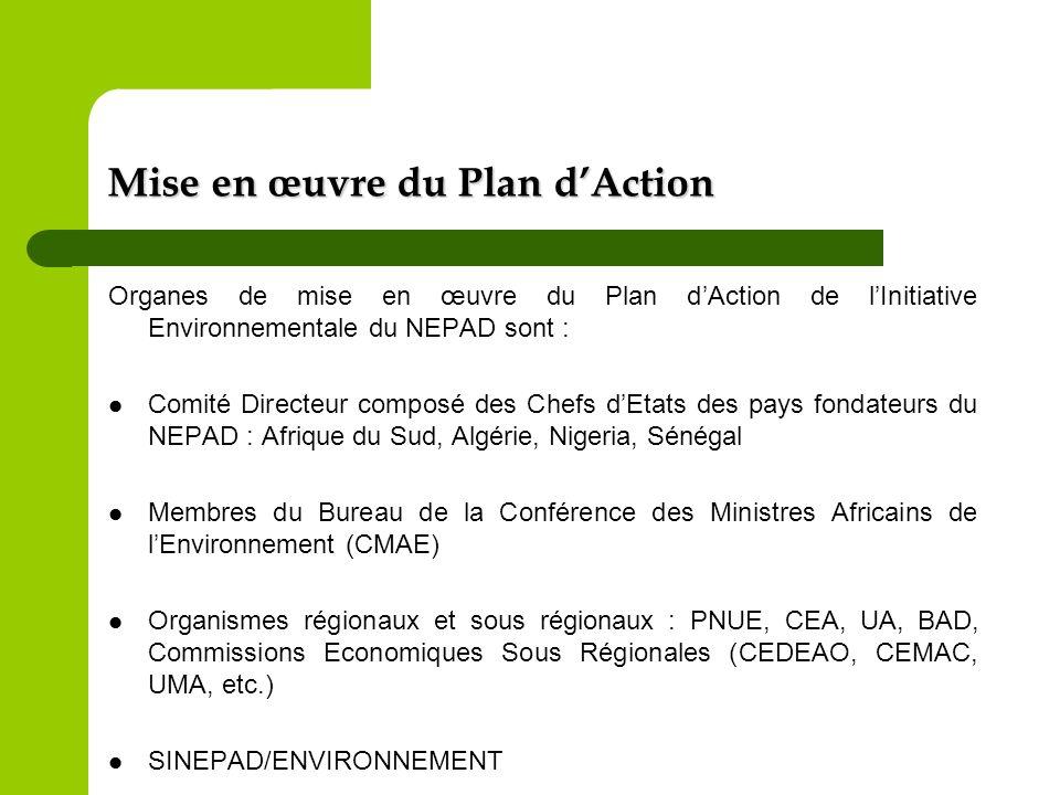 Mise en œuvre du Plan d'Action