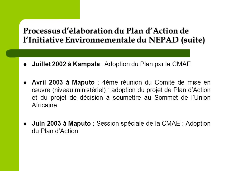 Processus d'élaboration du Plan d'Action de l'Initiative Environnementale du NEPAD (suite)
