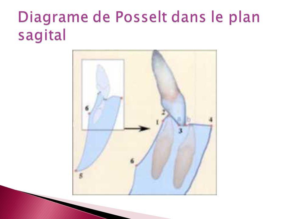 Diagrame de Posselt dans le plan sagital
