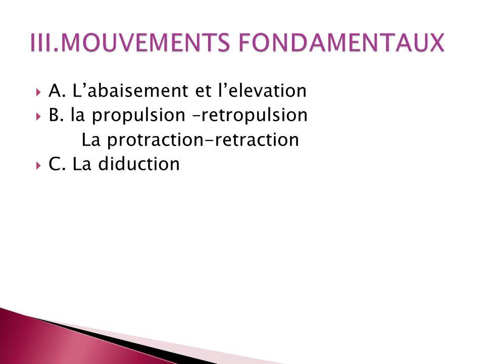 III.MOUVEMENTS FONDAMENTAUX