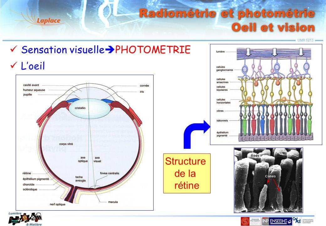 Radiométrie et photométrie Oeil et vision