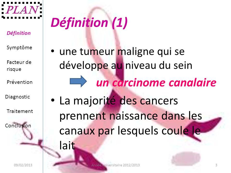 Définition (1) un carcinome canalaire