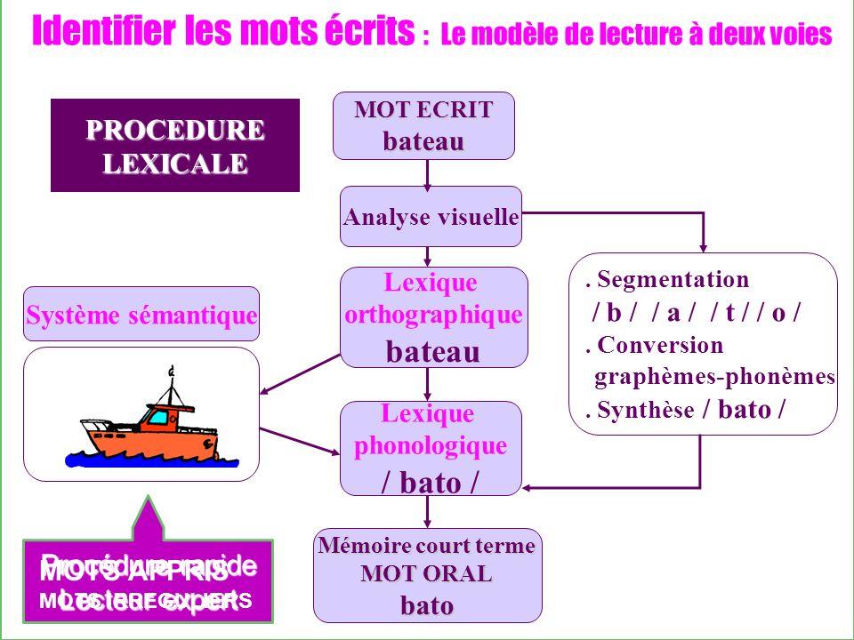 Identifier les mots écrits : Le modèle de lecture à deux voies