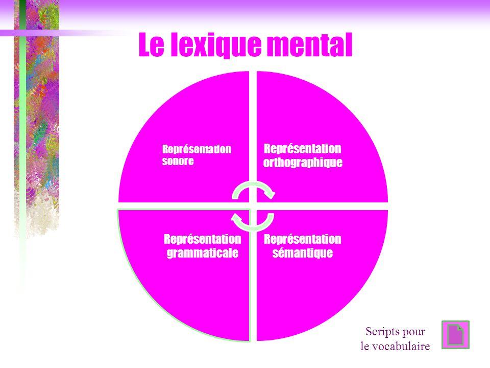 Le lexique mental Scripts pour le vocabulaire Représentation sonore
