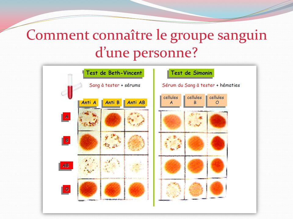 Comment connaître le groupe sanguin d'une personne