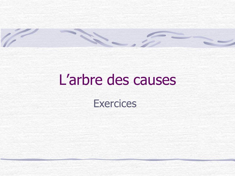L'arbre des causes Exercices