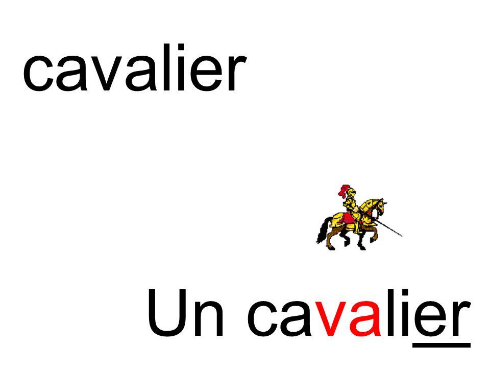 cavalier Un cavalier