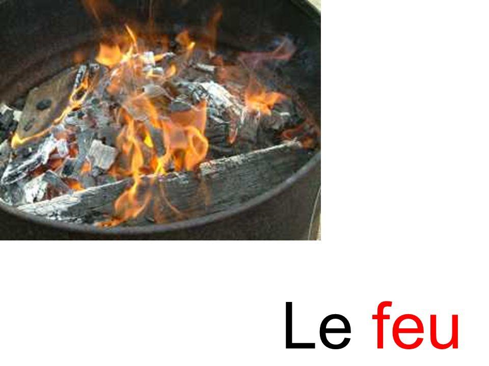feu Le feu