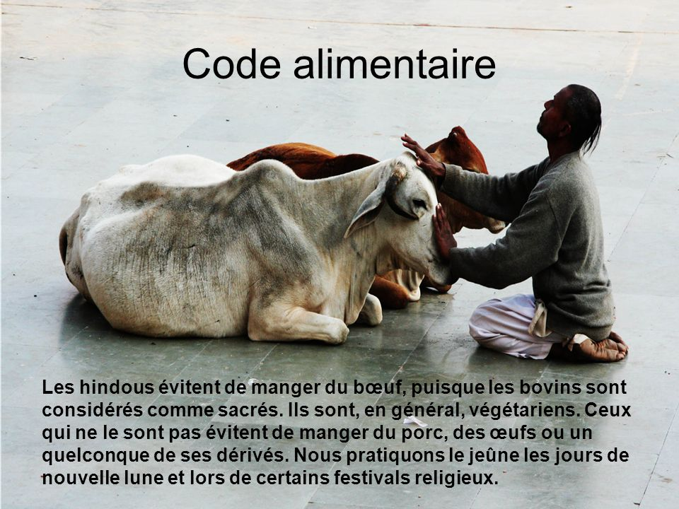 Code alimentaire