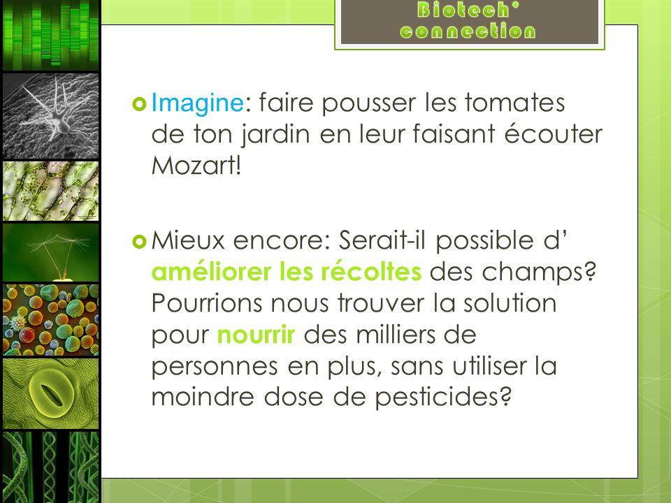Biotech' connection Imagine: faire pousser les tomates de ton jardin en leur faisant écouter Mozart!