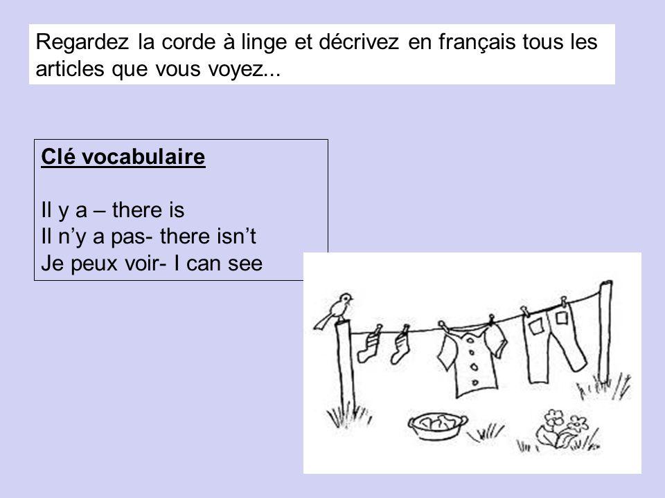 Regardez la corde à linge et décrivez en français tous les articles que vous voyez...