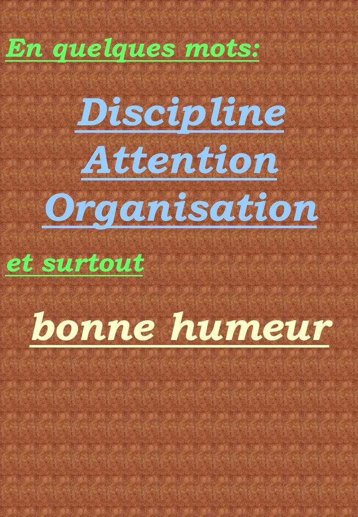 Discipline Attention Organisation
