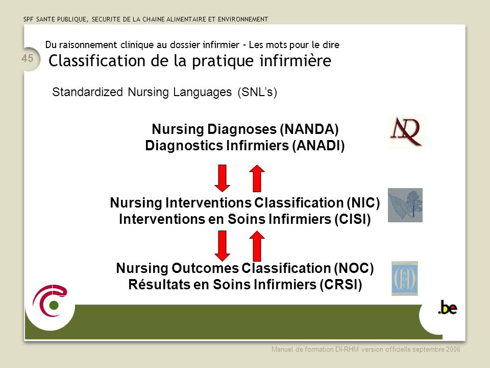 Nursing Diagnoses (NANDA) Diagnostics Infirmiers (ANADI)