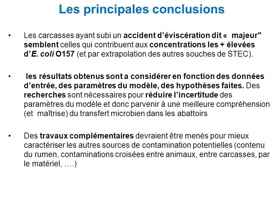 Les principales conclusions
