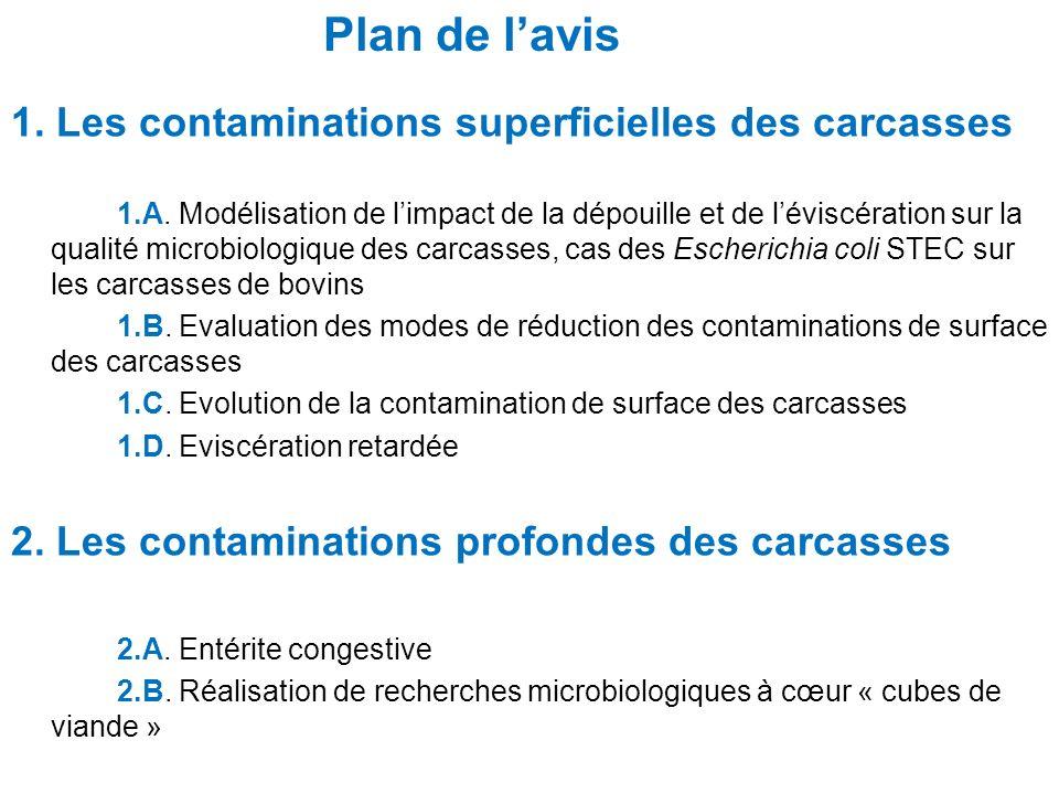 Plan de l'avis 1. Les contaminations superficielles des carcasses