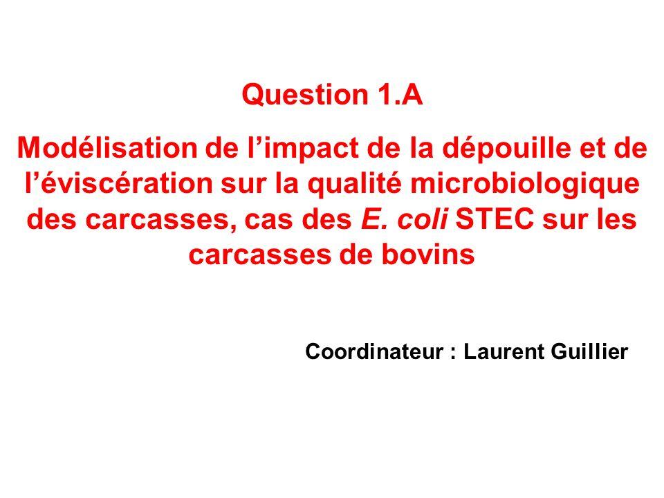 Coordinateur : Laurent Guillier