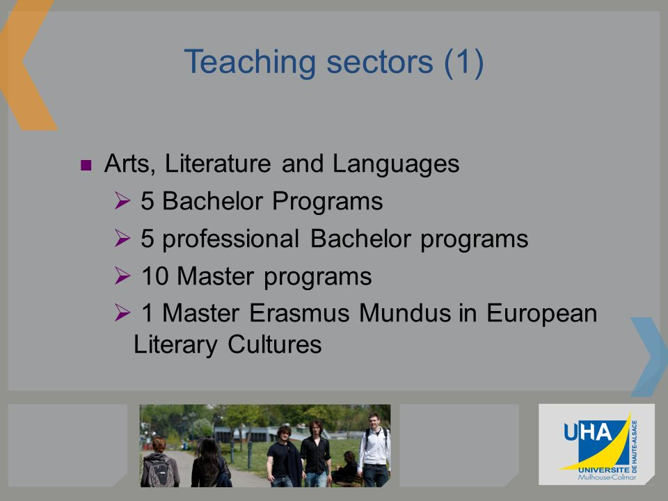 Teaching sectors (1) Arts, Literature and Languages