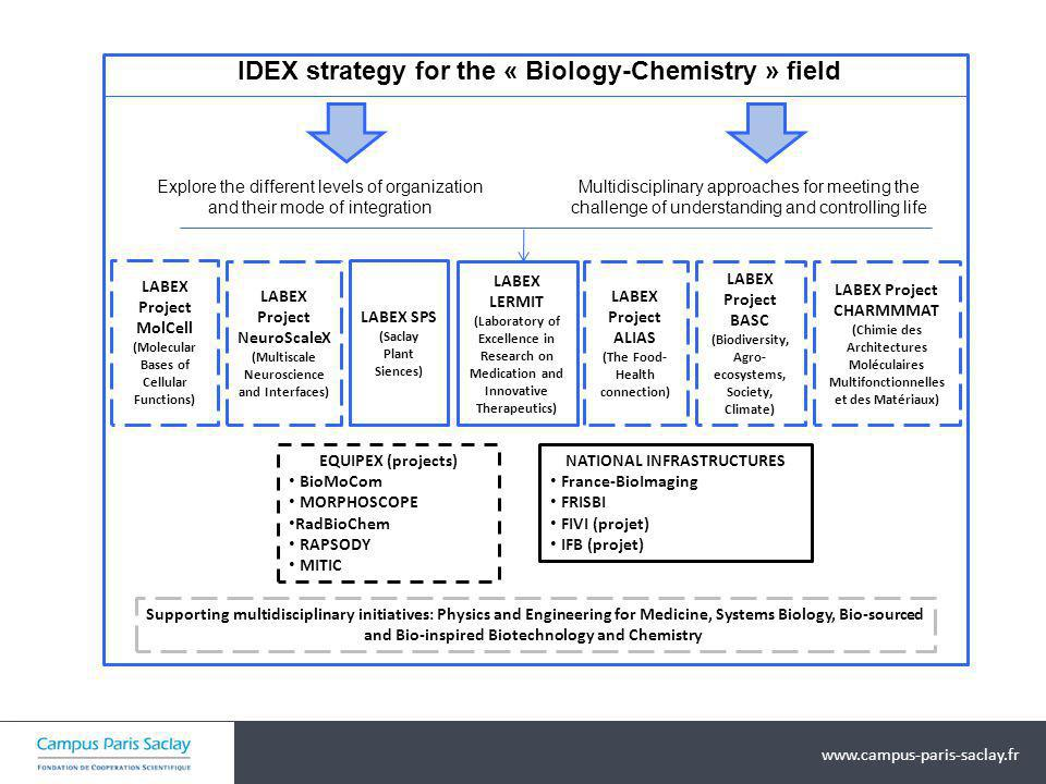IDEX strategy for the « Biology-Chemistry » field