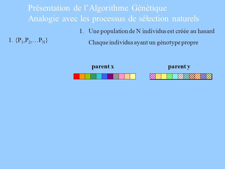 Présentation de l'Algorithme Génétique Analogie avec les processus de sélection naturels
