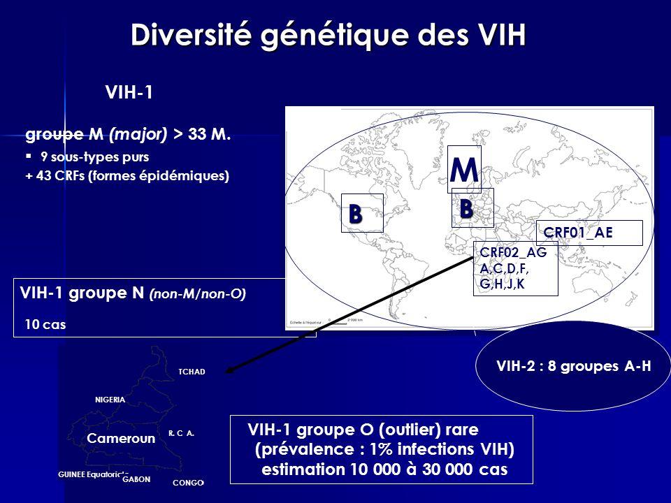 Diversité génétique des VIH