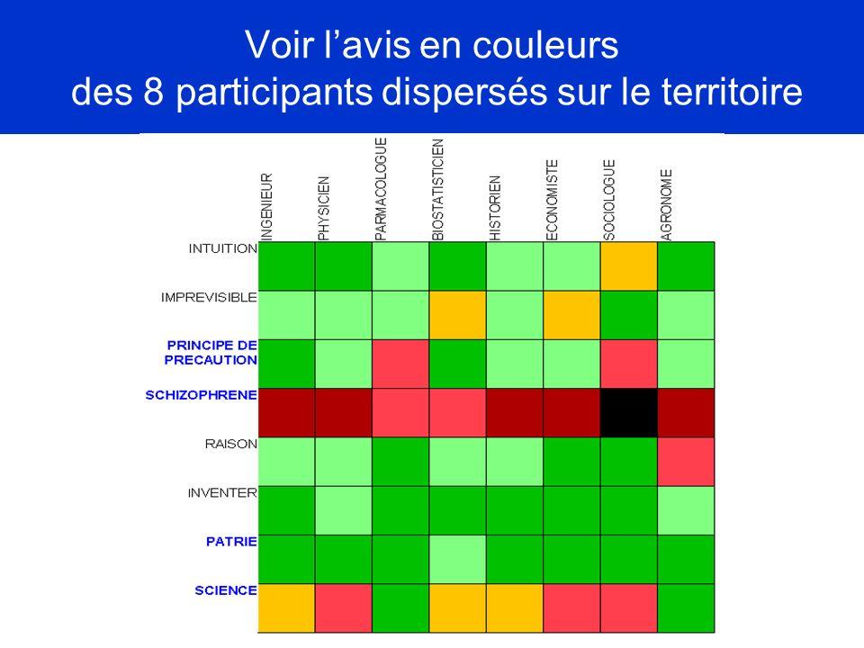 Voir l'avis en couleurs des 8 participants dispersés sur le territoire