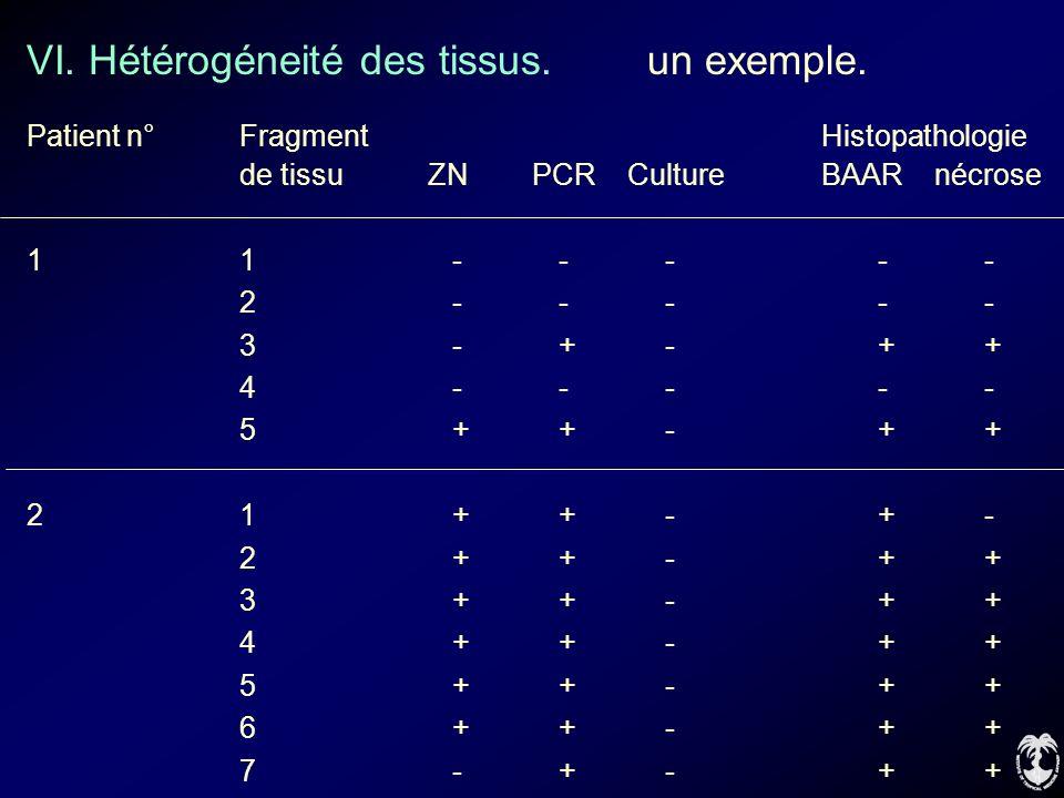VI. Hétérogéneité des tissus. un exemple.